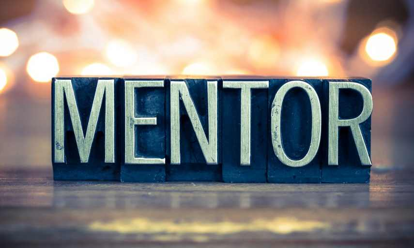 Who is a Mentor? An Overview of a Mentor's Role
